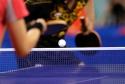 XVII  turniej tenisa stołowego bawmy się razem
