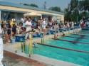 Letnie Otwarte Mistrzostwa POZP w pływaniu